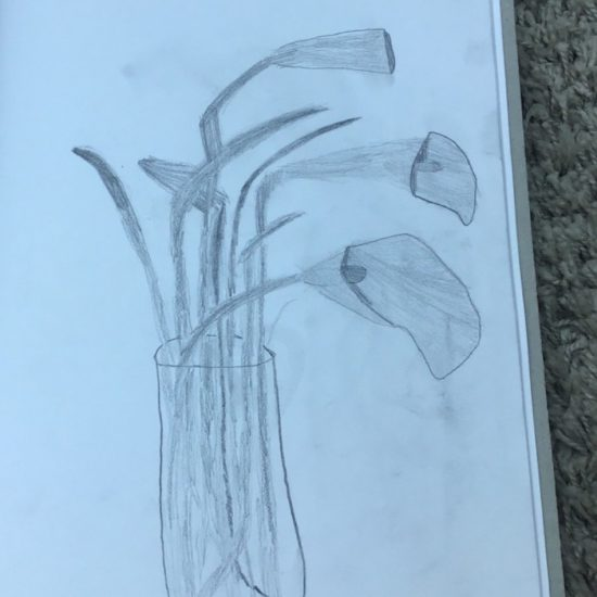 'Still Life' by Alex