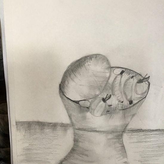 'Still Life' by Allana