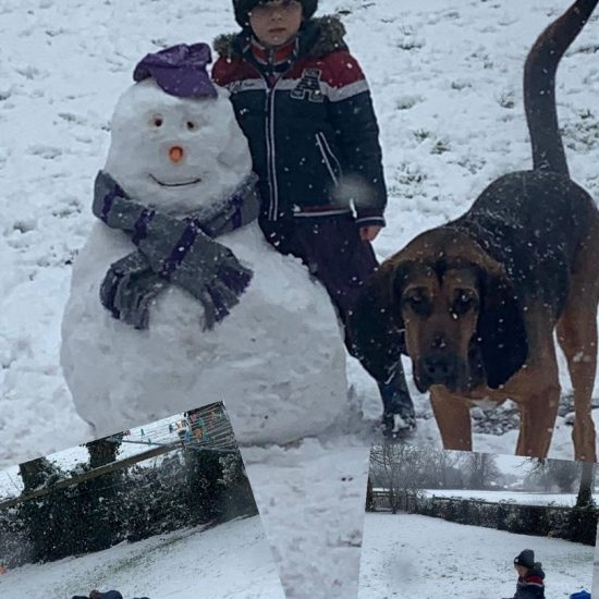 young boy and a dog next to a snowman